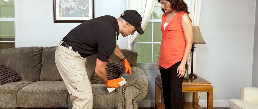 North Ridgeville, OH carpet upholstery cleaning